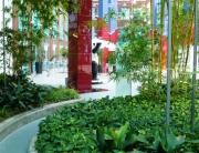 Bambushalle